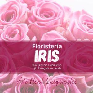 Floristería Iris